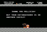 Er Pelliccia
