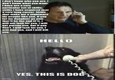Yes, This is Dog