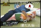 The Best Dakimakura Of All Time Dakimakura Body Pillow