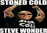 Stone Cold Steve Wonder
