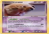 Headache Puppy