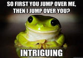 Therapy Frog