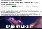 Granny Like It
