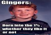 Ginger Guy