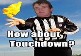 NFL Replacement Refs