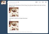 Astronaut Sloth
