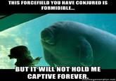 soon overlord manatee know your meme