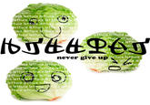 "Lettuce / It Says ""Never Give Up"""