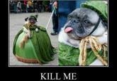 Kill Me