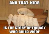 Storytelling Dog