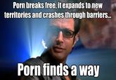 Online Pornography