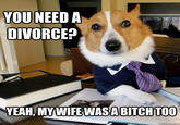 Lawyer Dog