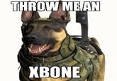 Xbone
