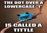 Small Fact Frog