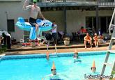 Leisure Diving