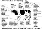 Vegan/Veganism