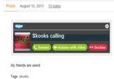 The Misadventures of Skooks
