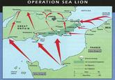 Sea-Lioning