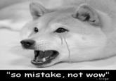 """Anime Was a Mistake"""