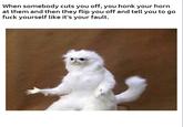 Persian room cat guardian memes