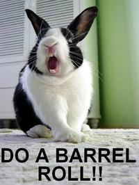 Do A Barrel Roll