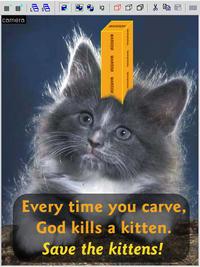 Every time you masturbate, God kills a kitten