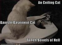Funny-pictures-ceiling-cat-banished-basement-cat-bowels-hell