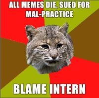 Doctor Bobcat All memes die sued for mal practice Blame Intern unsuccessful advice dog spin off's image gallery (sorted by views