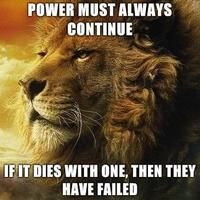 Power Lion