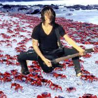 Crabcore