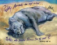 Montauk Monster
