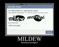 Mildew2