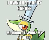 I-own-the-trophy-garden-mr-backlot-who-my-feeder