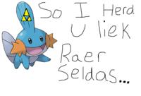 RAER SELDAS