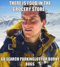 There-is-food-in-the-grocery-store-go-search-parkinglot-for-burnt-bugs