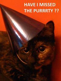 cat planet