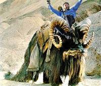 Hugh Jackman Can Ride Anything!