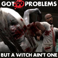 I Got 99 Problems But a Bitch Ain't One
