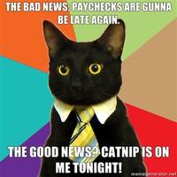 The-bad-news-paychecks-are-gunna-be-late-again-the-good-news-catnip-is-on-me-tonight