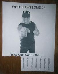 IRL Troll Posters
