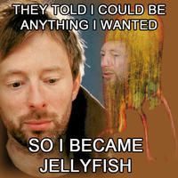 Thomyorkejellyfish