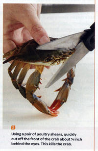 Sad Crab / This Kills The Crab