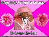 No Homo