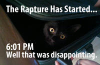 The Rapture Kitty