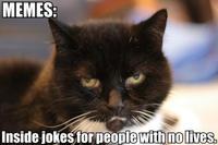 memes_inside_jokes_for_people_with_no_lives_trollcat.jpg