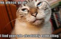 your_tale_is_enthralling_trollcat.jpg