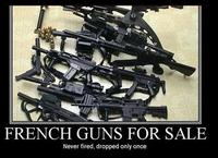french_guns.jpg
