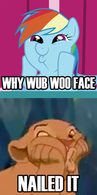 Why Wub Woo / Dashface