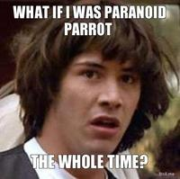 What-if-i-was-paranoid-parrot-the-whole-time