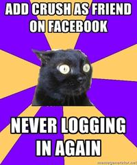 tumblr_lve6qr3XhJ1qeqh4eo1_400 anxiety cat image gallery know your meme